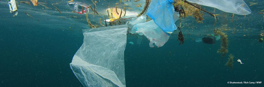 """La Méditerranée risque de devenir une """"mer de plastique"""", alerte un nouveau rapport du WWF"""