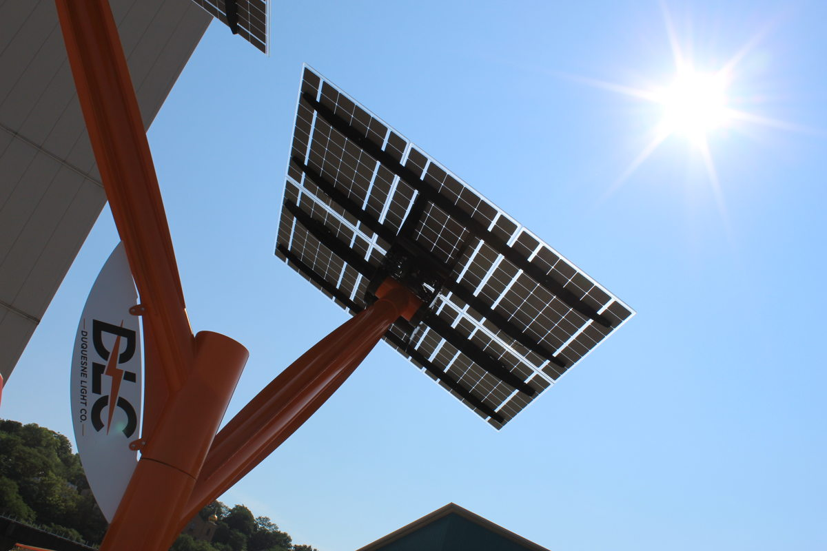 On a bright, cloudless day, the solar panels atop the tree harness plenty of sunlight to produce clean energy.