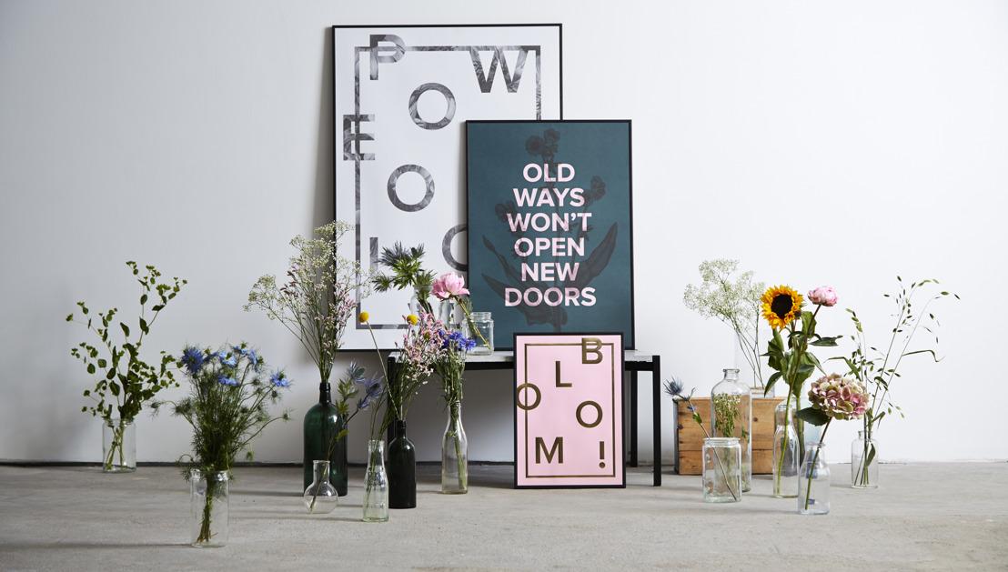 Trefzekere typografie troef bij Nordic Living