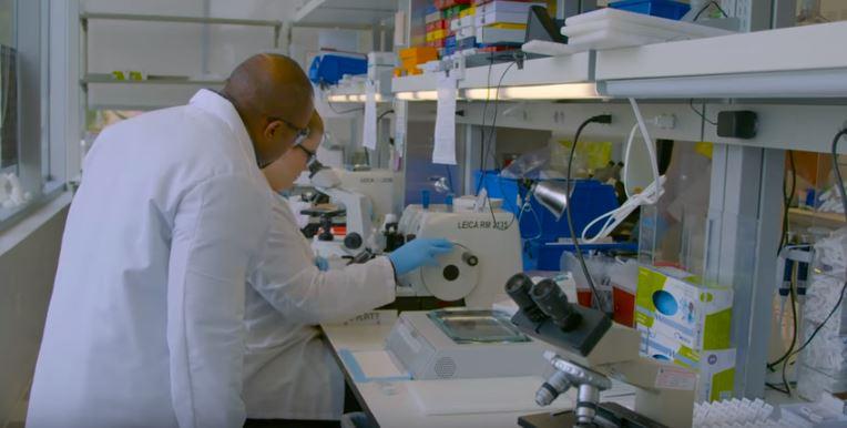 Dr. Carter oversees lab test.