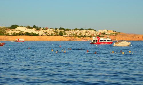 Thomas Cook offre de modifier sans frais les réservations des vacances d'été à Sharm el Sheikh