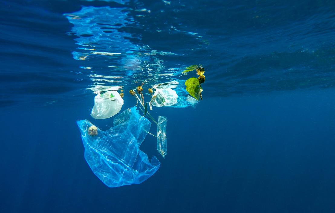 AL 25 JAAR ZET FROSCH ZICH IN VOOR DE BESCHERMING VAN DE OCEANEN