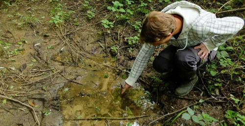 Nitraatrijke bronnen vragen verdergaande maatregelen om waterkwaliteit te verbeteren