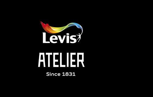 DARWIN KLEURT BUITEN DE LIJNTJES VOOR LEVIS ATELIER