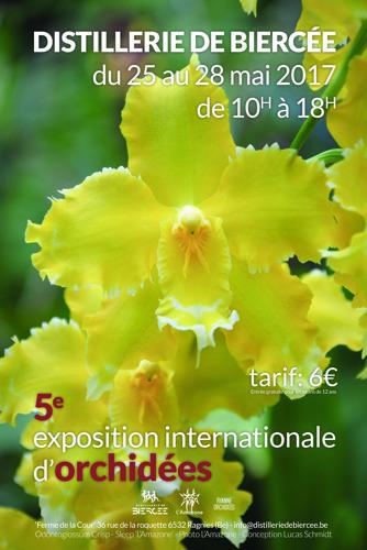 5ème exposition et vente d'orchidées uniques dans le cadre exceptionnel de la Distillerie de Biercée !