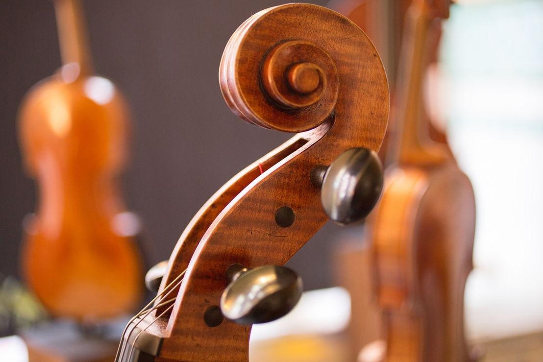 KEW - cello - (c) Bruno Vessiez