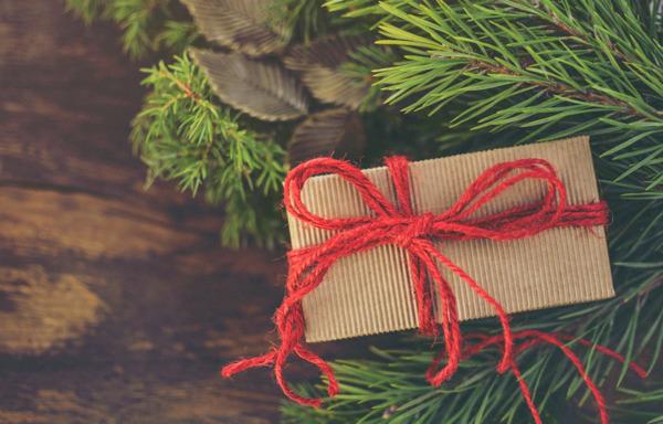 Preview: Vom Krimi bis zum Kochbuch: Die persönlichen Leseempfehlungen der Hugendubel-Buchhändler für Weihnachten