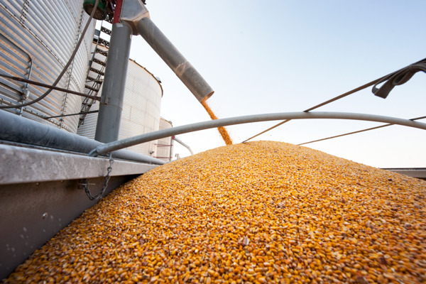 Preview: GROWMARK Ranks #1 Retailer with Most Grain Elevator Revenue
