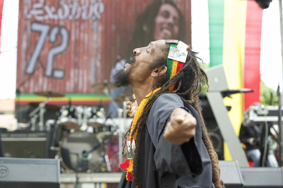 Diehard Marley fan<br/>Photo credit: Garreth M. Daley - GD Films
