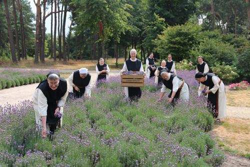 Preview: Les moniales de l'Abbaye Notre-Dame-de-Nazareth à Brecht lancent un shampooing à base de bière trappiste