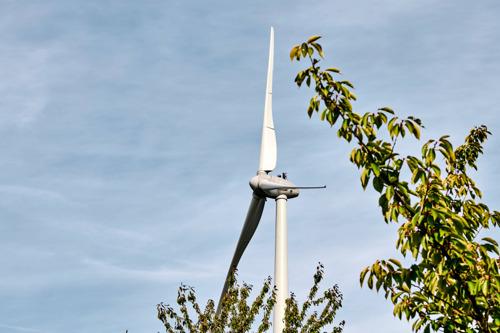 Luminus en Zefier richten Zo-Fier op voor een groenere energietoekomst