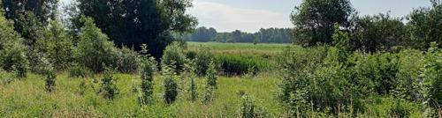 150 ha ingezet om effecten klimaatopwarming tegen te gaan in Grobbendonk en Vorselaar