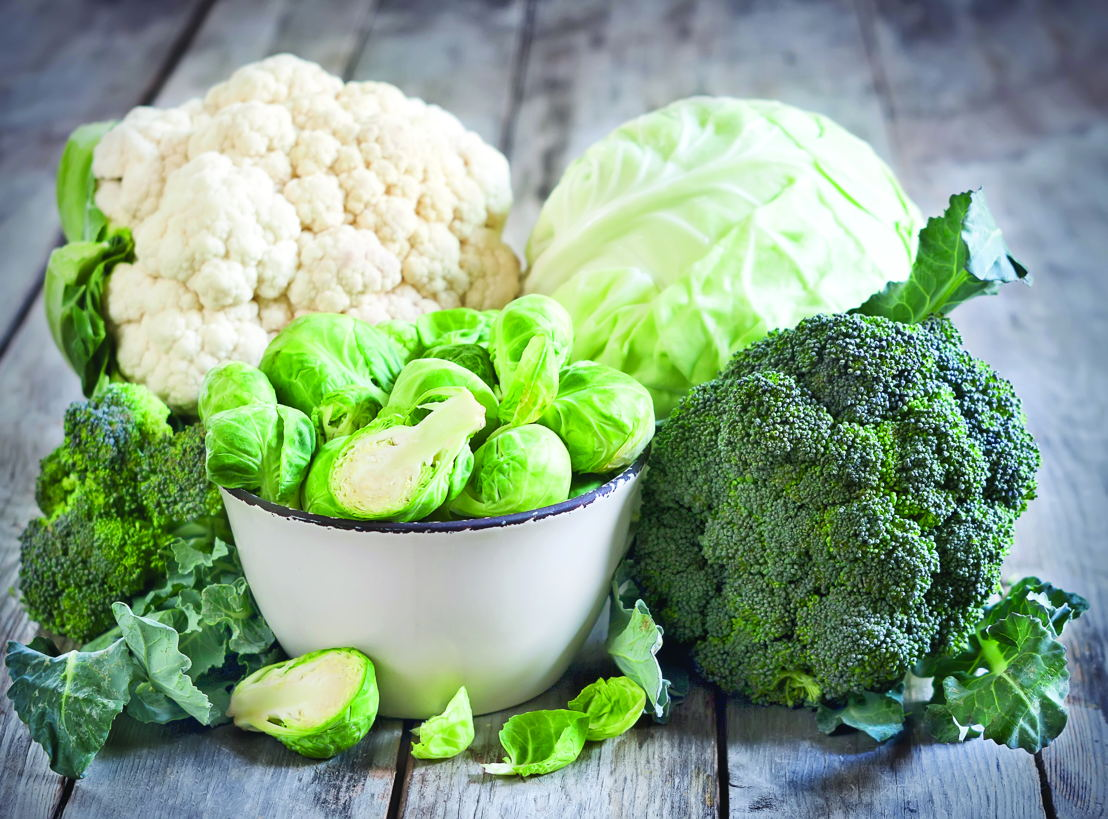Broccoli, brussel sprouts, cabbage, cauliflower (photo credit Pike Nurseries)