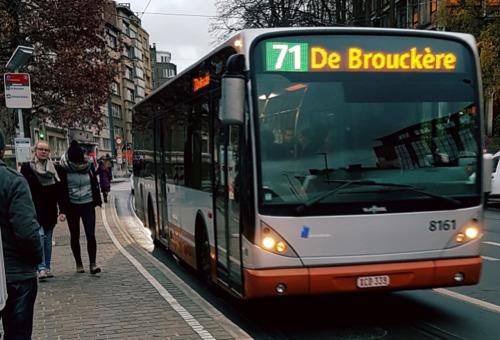 Le bus nocturne 71 remporte un vif succès