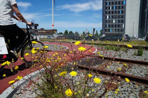 Mobiliteitsinitiatieven in haven van Antwerpen werpen hun vruchten af
