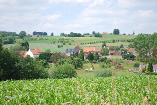 Provincie stimuleert lokaal genieten van het platteland via projectsubsidies