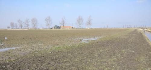 VLM doet oproep om grasstroken in landbouwgebied niet te betreden