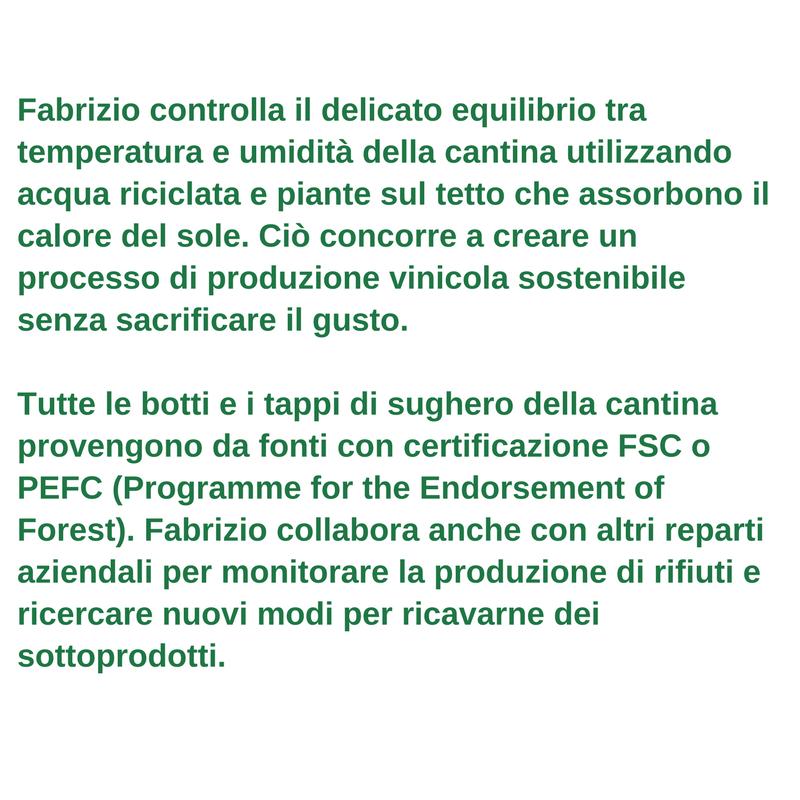 Profilo del lavoratore verde - Fabrizio Savino