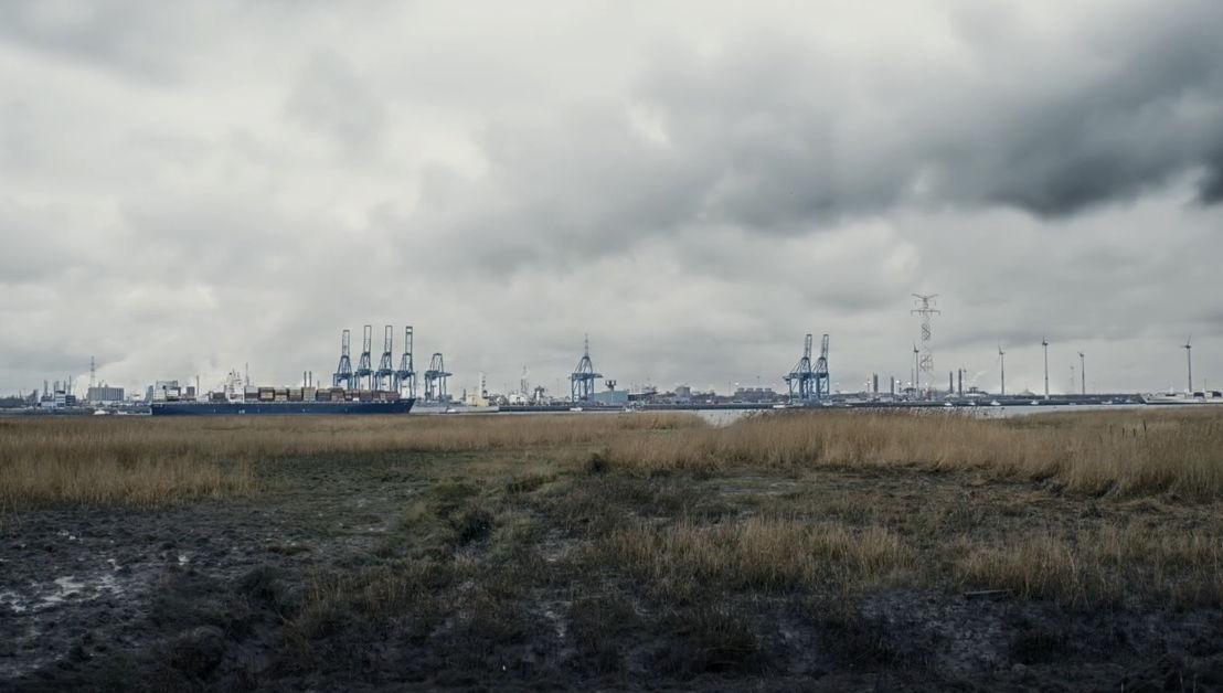 De Schelde en de haven vanop Linkeroever- (c) Riche, Riche & Riche