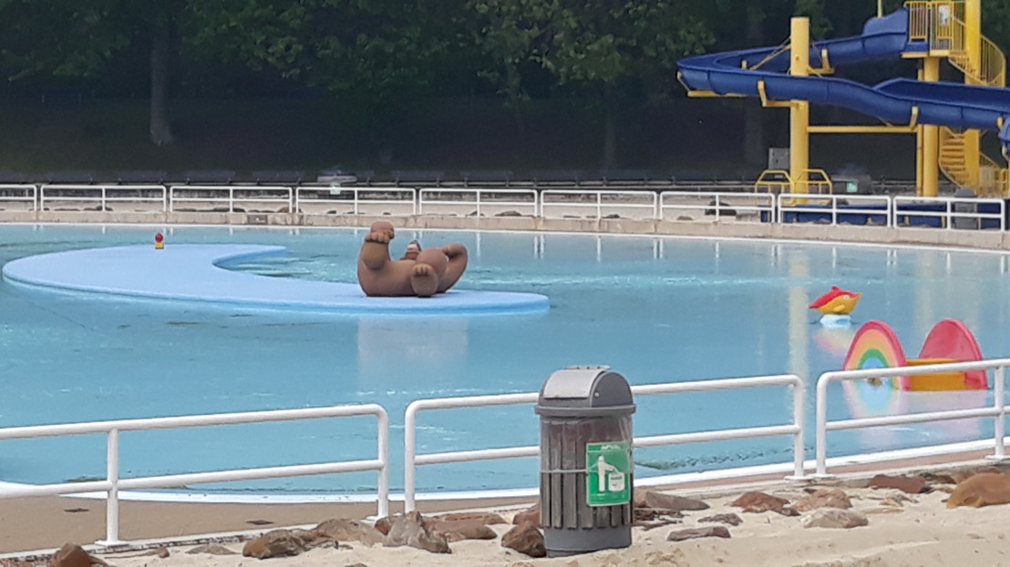 Zwembad Halve Maan terug open voor publiek