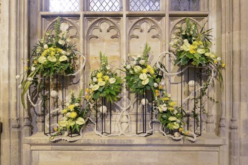 Alan Titchmarsh to Open Illumination – A Festival of Flowers