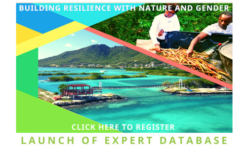 OECS Launches Database of Experts on Ecosystem-Based Adaptation, Gender Equality and Social Inclusion