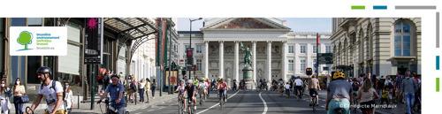 Brusselaars ademden zuiverdere lucht in op de autoloze zondag