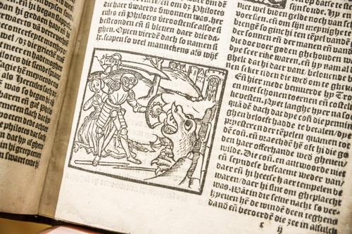 Ridderverhalen van Karel ende Elegast tot Don Quichot