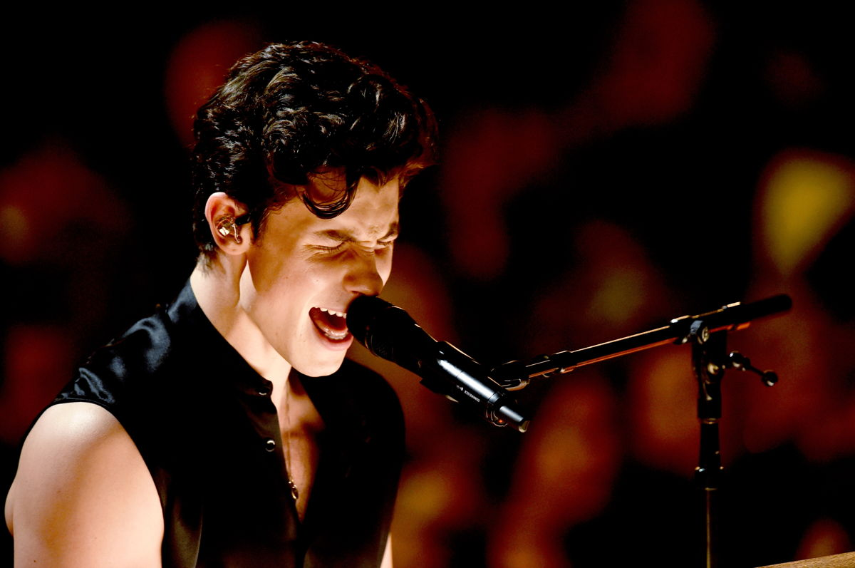 Shawn Mendes performing at the 61st Grammy Awards in Los Angeles, California (Photo Credit: Getty Images, Kevin Winter)