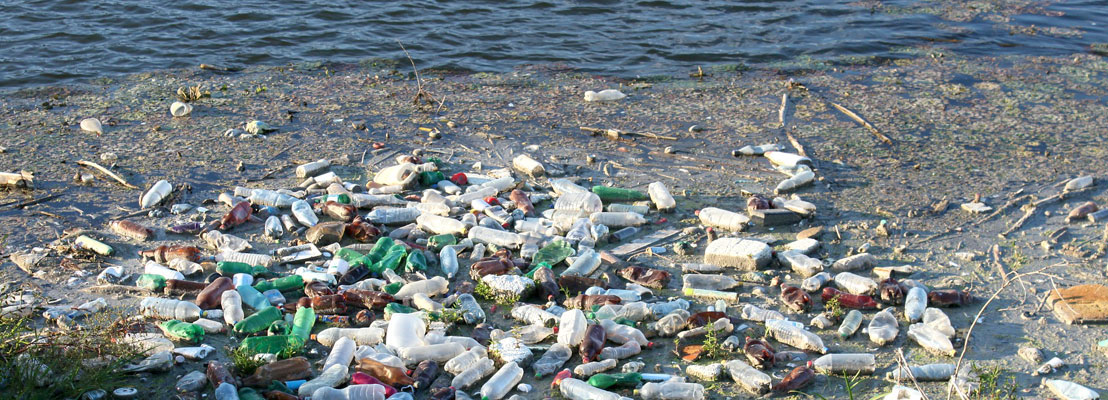 OECS Journalists and Singers Enlisted In The Fight Against Ocean Pollution