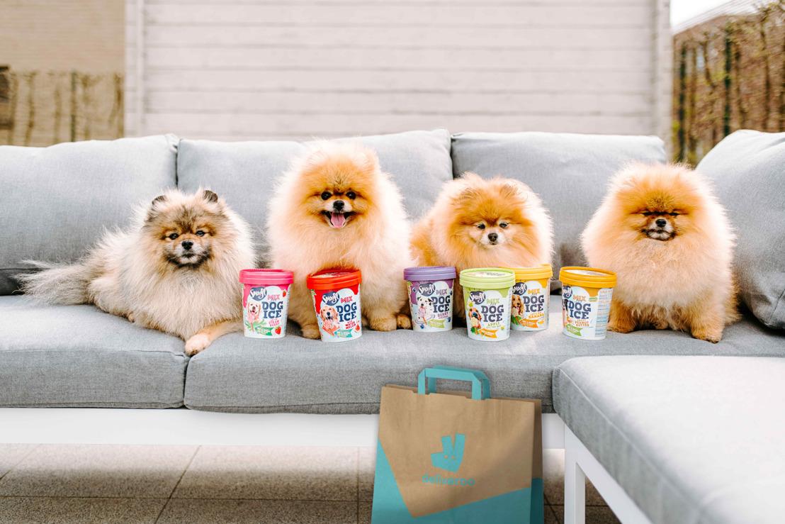 Deliver-woof: heerlijke hondenijsjes voor International Dog Day met Deliveroo