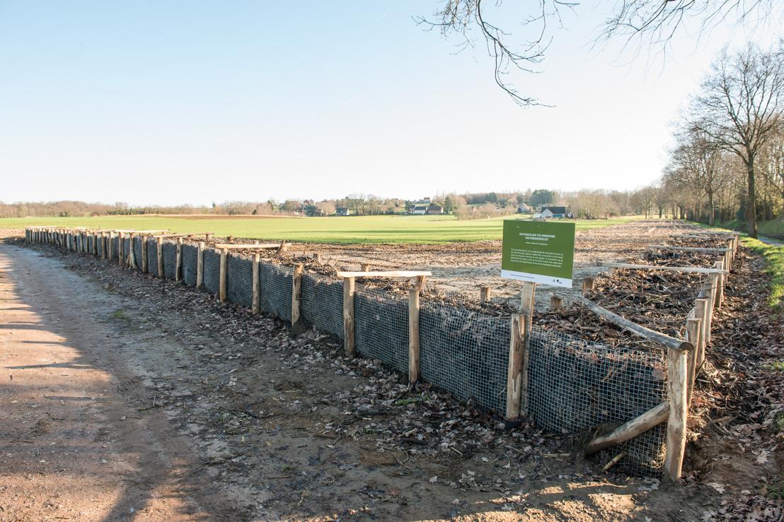 Erosiebestrijdingswerken Paapbosstraat in Aarschot afgerond