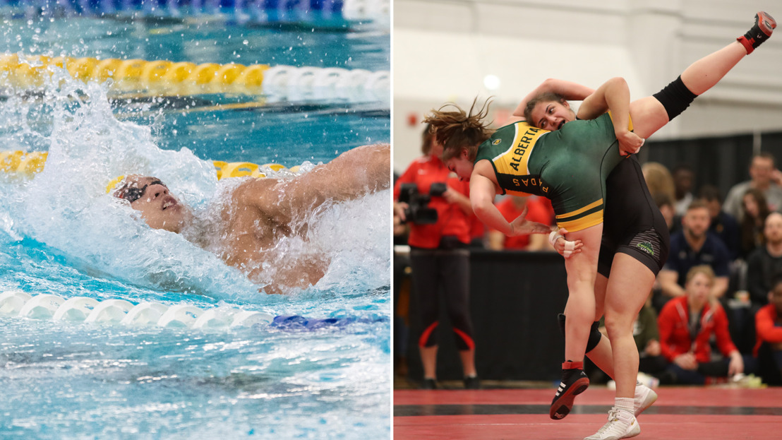 CW three stars: Swimmers, wrestlers earn stars