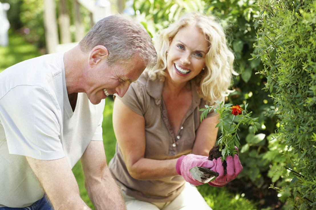 Gardening as stress relief (Photo credit to Pike Nurseries)