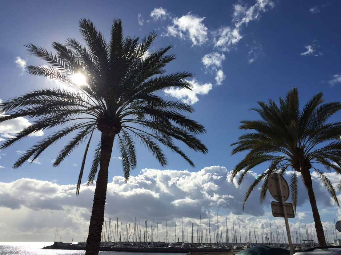 Palma de Majorca, Spain