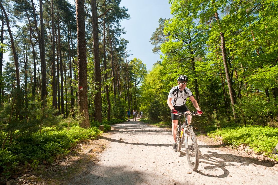 Mountainbiker in het Kalmit (Paltswoud) (c) Dominik Ketz