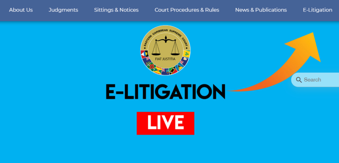 Technology and Law: e-Litigation Portal Update