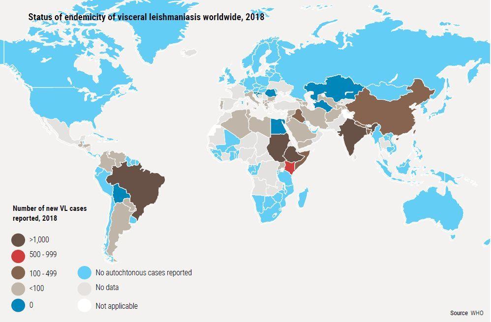 Situación endémica de la leishmaniasis visceral (Kala azar) en el mundo en 2018.