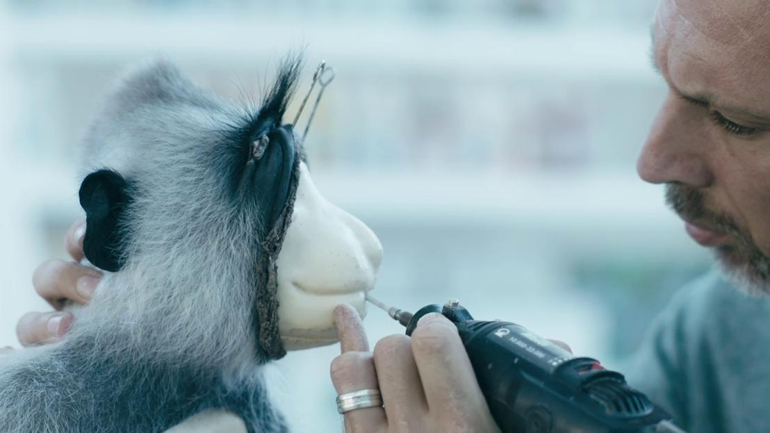 Een andere kijk - Taxidermist Christophe De Mey met aap 2.