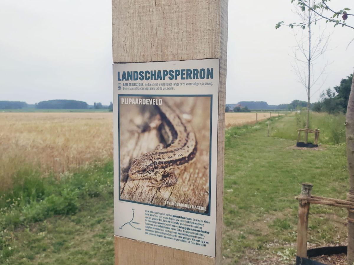 Aan de landschapsperrons krijgen de bezoekers informatie over de lokale planten en dieren