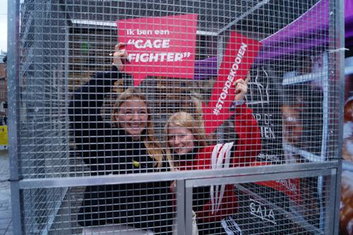 Tientallen 'cage fighters' opgesloten in kooi in Leuven