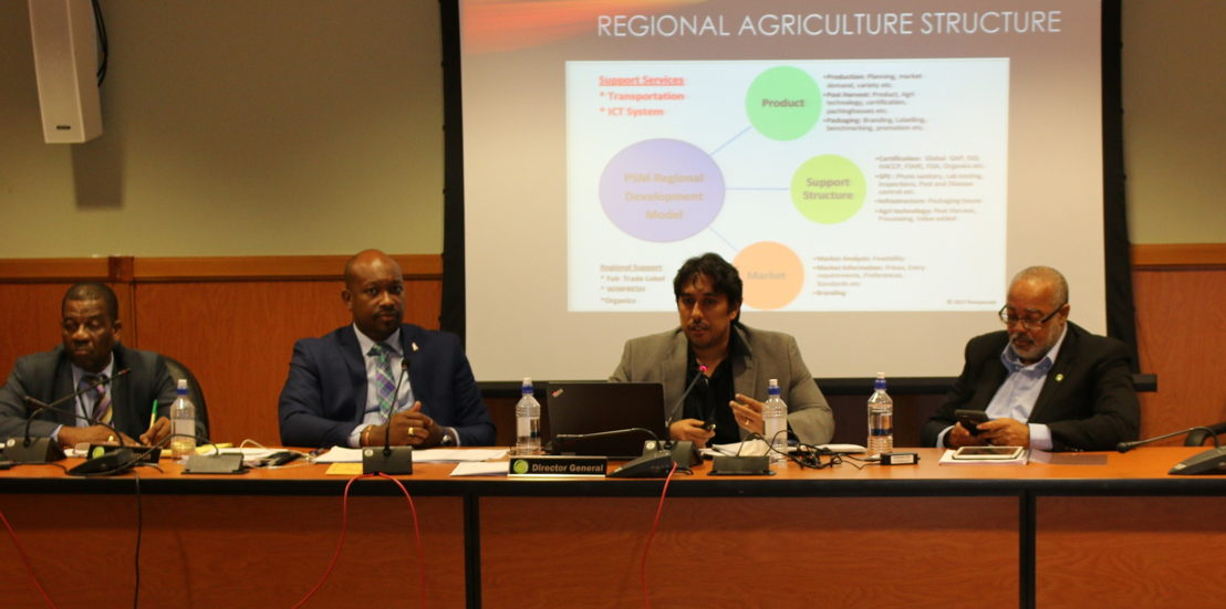 Mr. Jai Rampersad, General Manager of Bunny Import and Exports Limited, makes presentation to the Meeting.