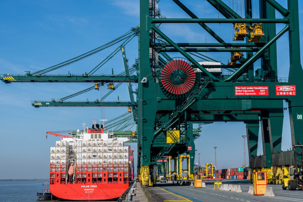 Preview: Le port d'Anvers poursuit sa croissance et consolide sa forte position dans le marché des reefers