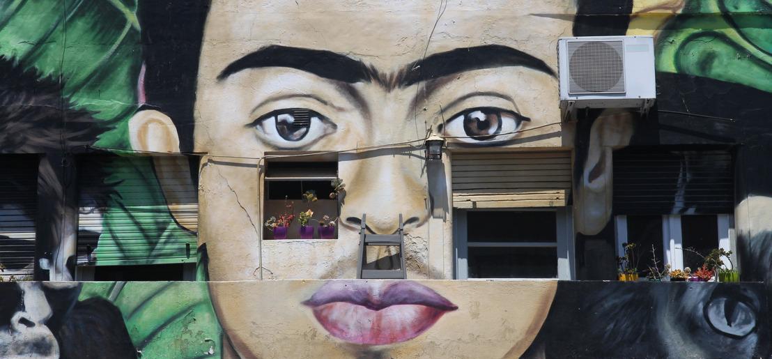 """""""Frida Inmersiva"""", libros seleccionados para adentrarnos en la vida de nuestro querida artista"""