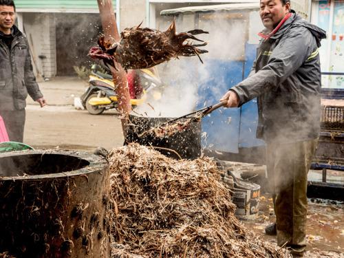 Coronavirus : pourquoi il faut fermer les «marchés humides»