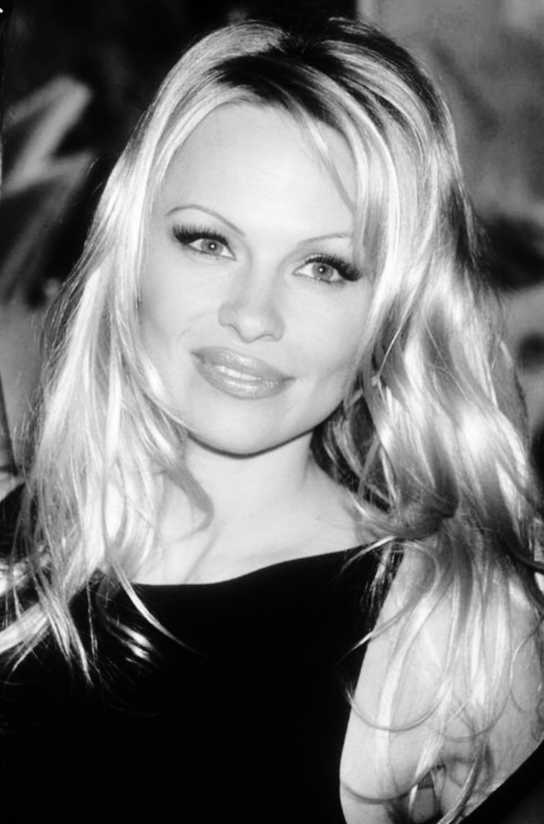 Pamela Anderson schrijft brief aan Vlaams minister van Dierenwelzijn Ben Weyts