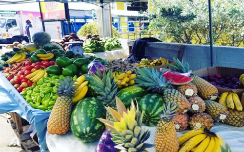 St. Vincent and the Grenadines Fresh Produce Markets Open Nationwide