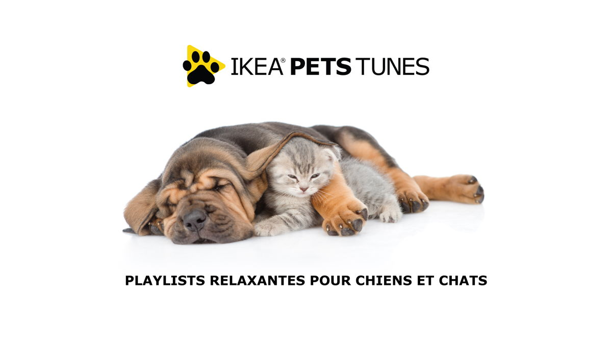 IKEA, lurvig, pets, animals, pets tunes radio, dog radio, cat radio, zen, calming tunes, 2019