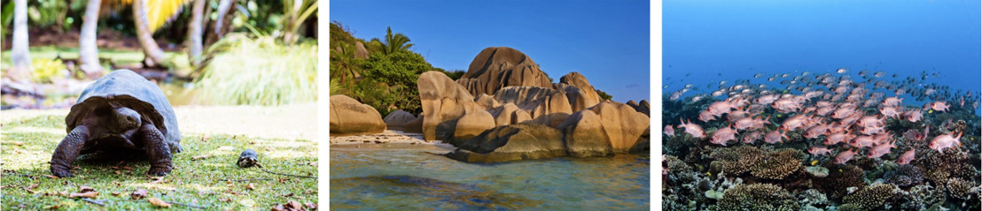 3 Seychelles Secret Escapes You Can't Miss
