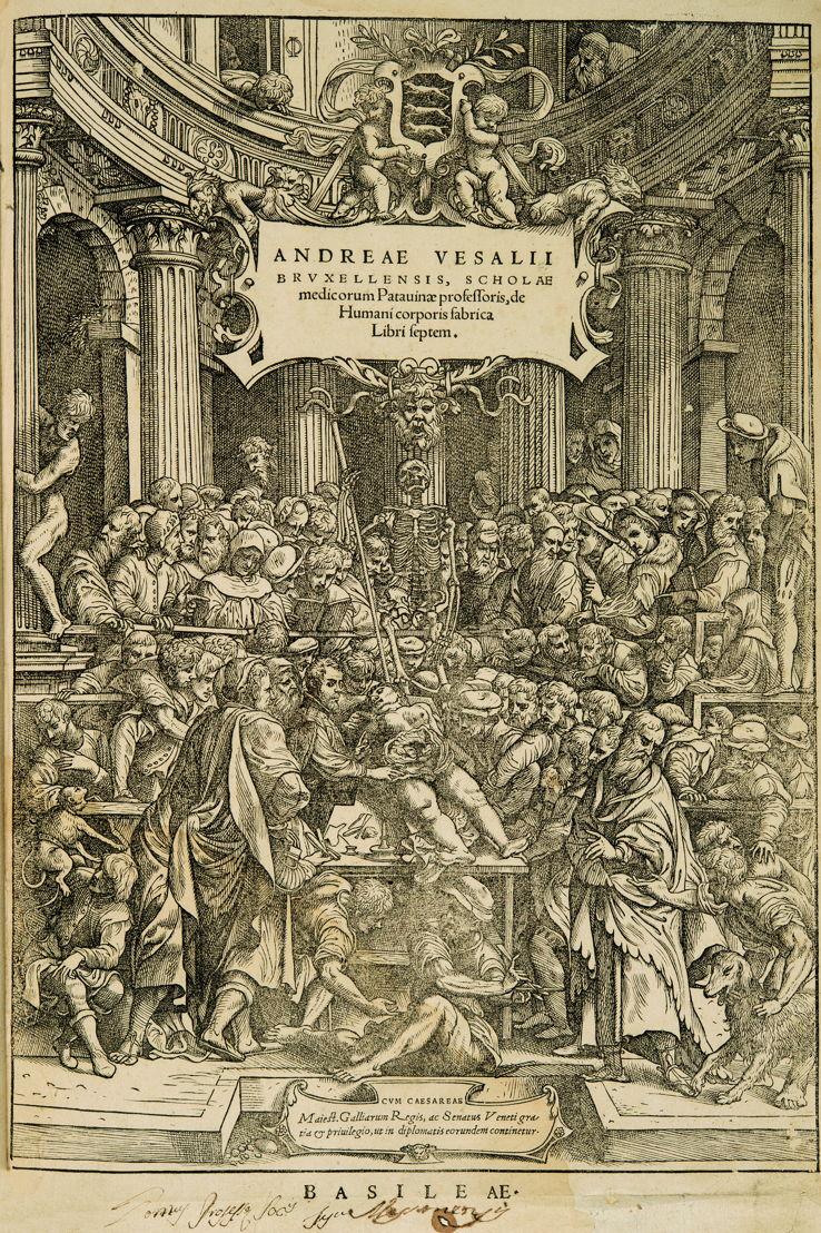 Frontispice de: André Vésale, De Humani Corporis Fabrica Libri Septem, Bâle, 1543 © KU Leuven, Bibliothèque universitaire, inv. CaaC17 – Bruno Vandermeulen.